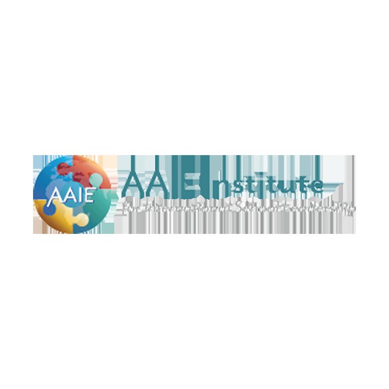 Logo of AAIE Institute